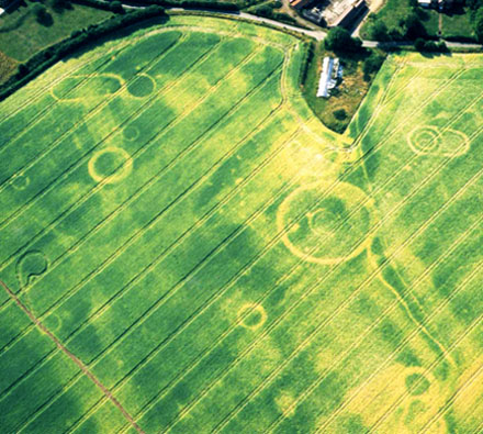 Aerial Photo of Damerham Crop Marks