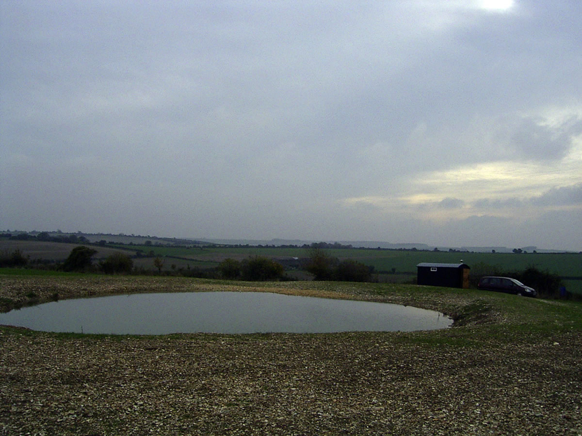 The pond, a few weeks later, looking south across Cranborne Chase.