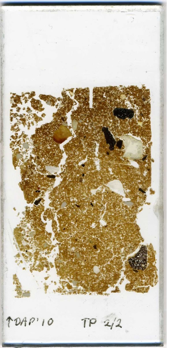 One of Kate's thin sections, in all its glory.