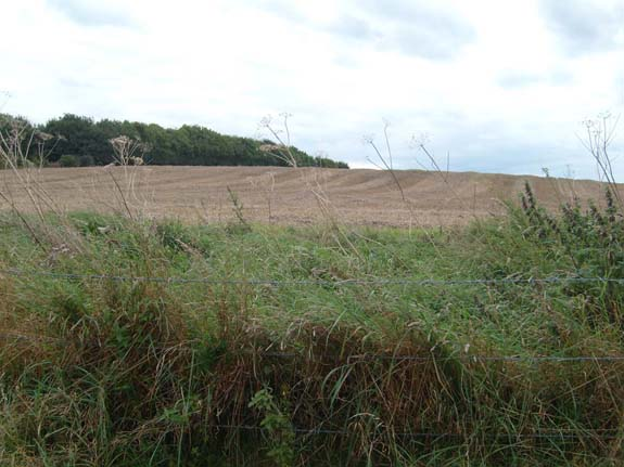 Dampney Long Barrow